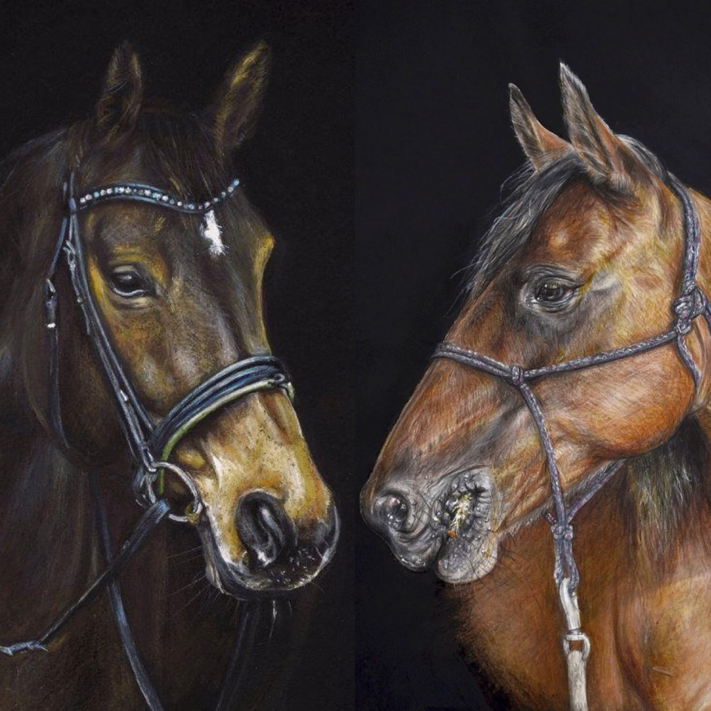 'Equine Studies' by Lesley McGee