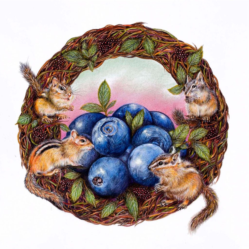 'Blueberry Chipmunks' by Lesley McGee