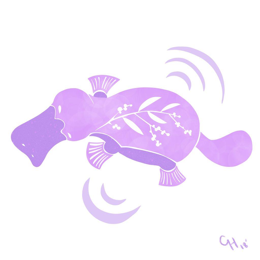 'platypus' by Catharine Harper
