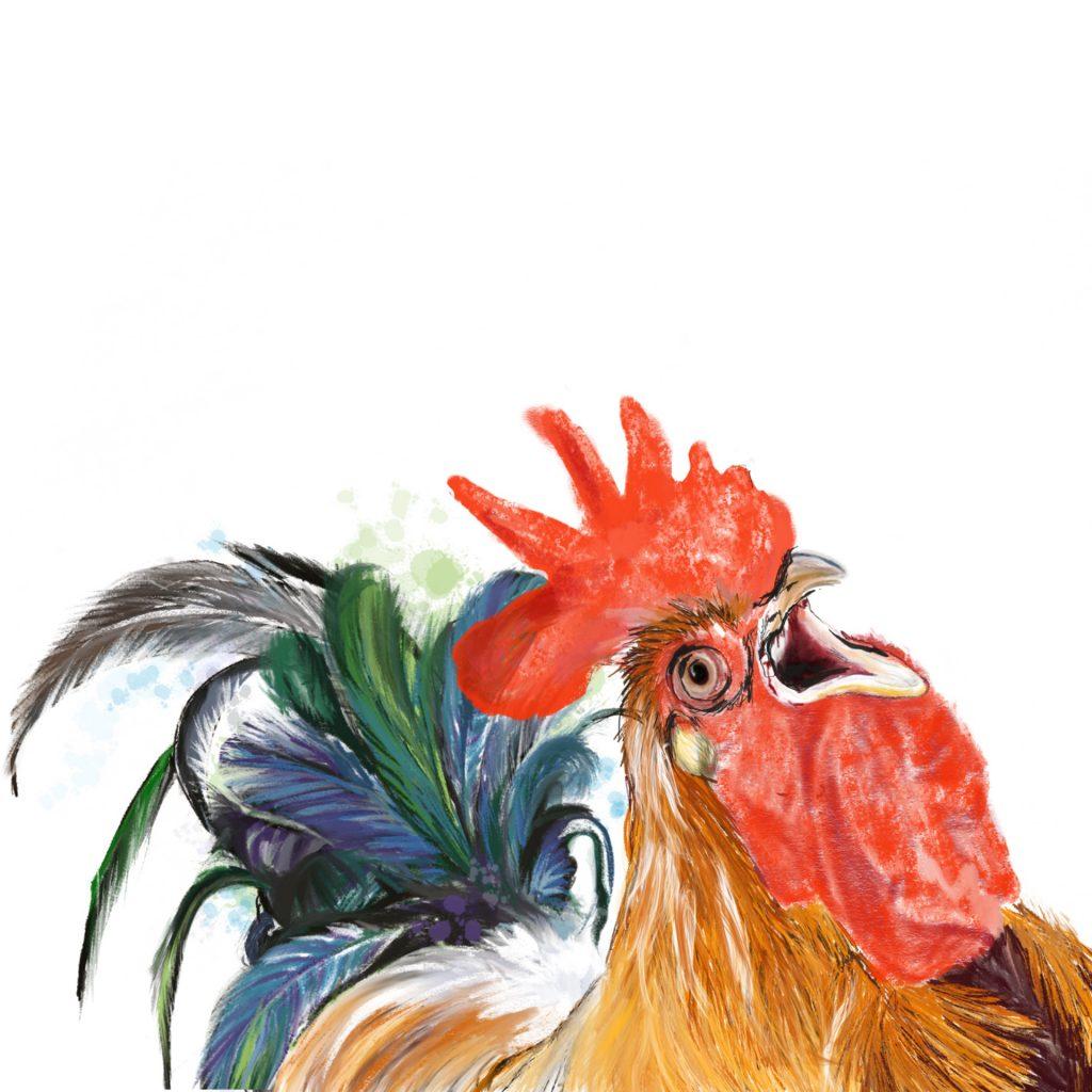 'Cook-a-doodle-doo' by Helen Alker