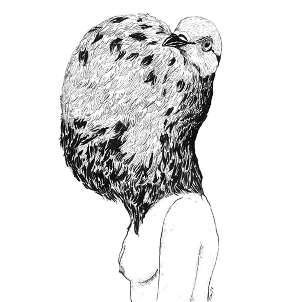 'Darwin's Pigeons Series - Pigeon Head' by Danielle Tam