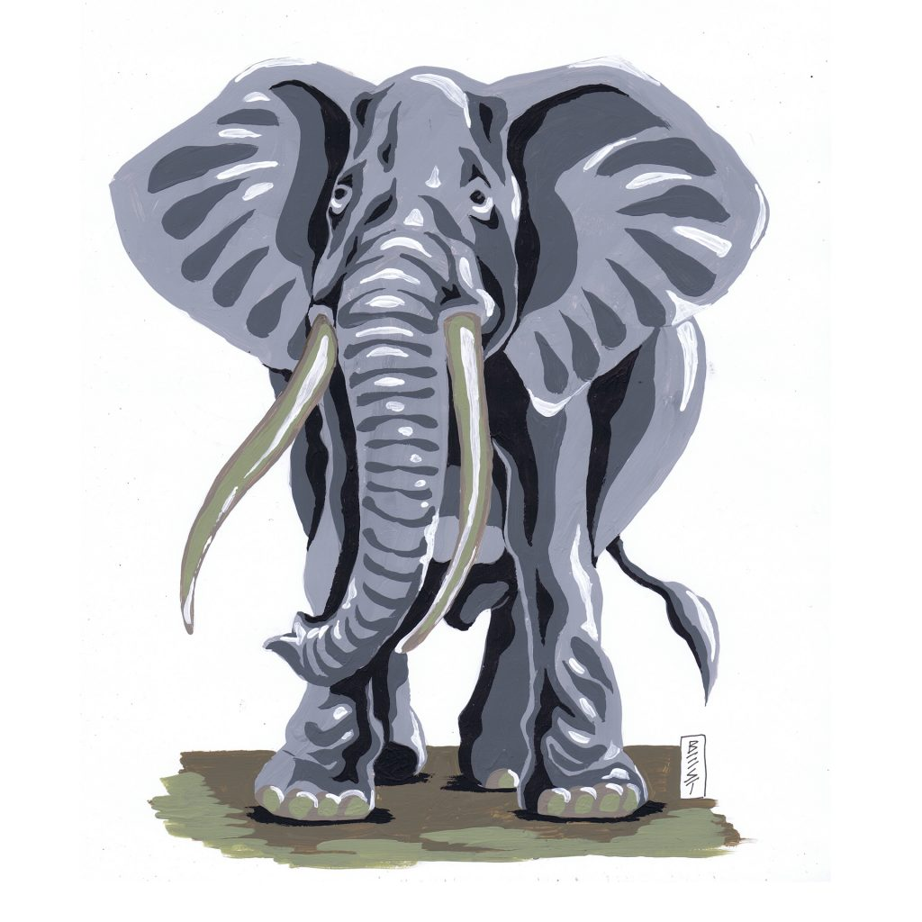 'Elephant' by Ken Best
