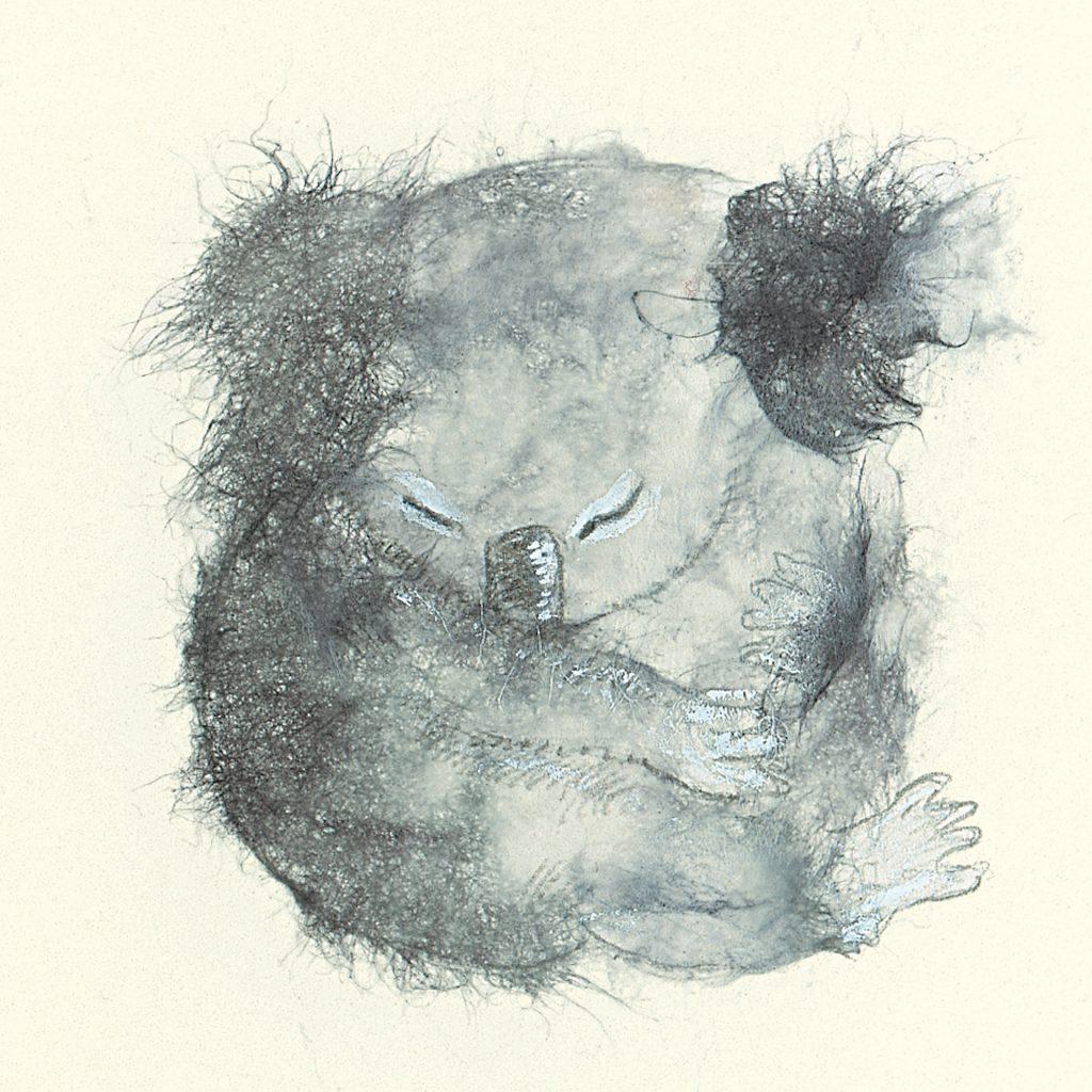 'Koala' by Lisa Stewart