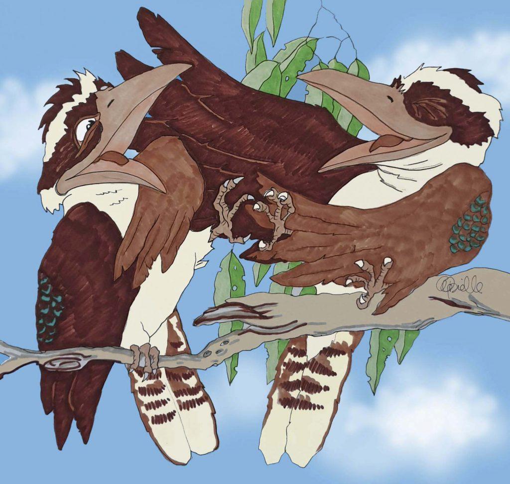 'Laughing Kookaburras' by Anna Gabrielle