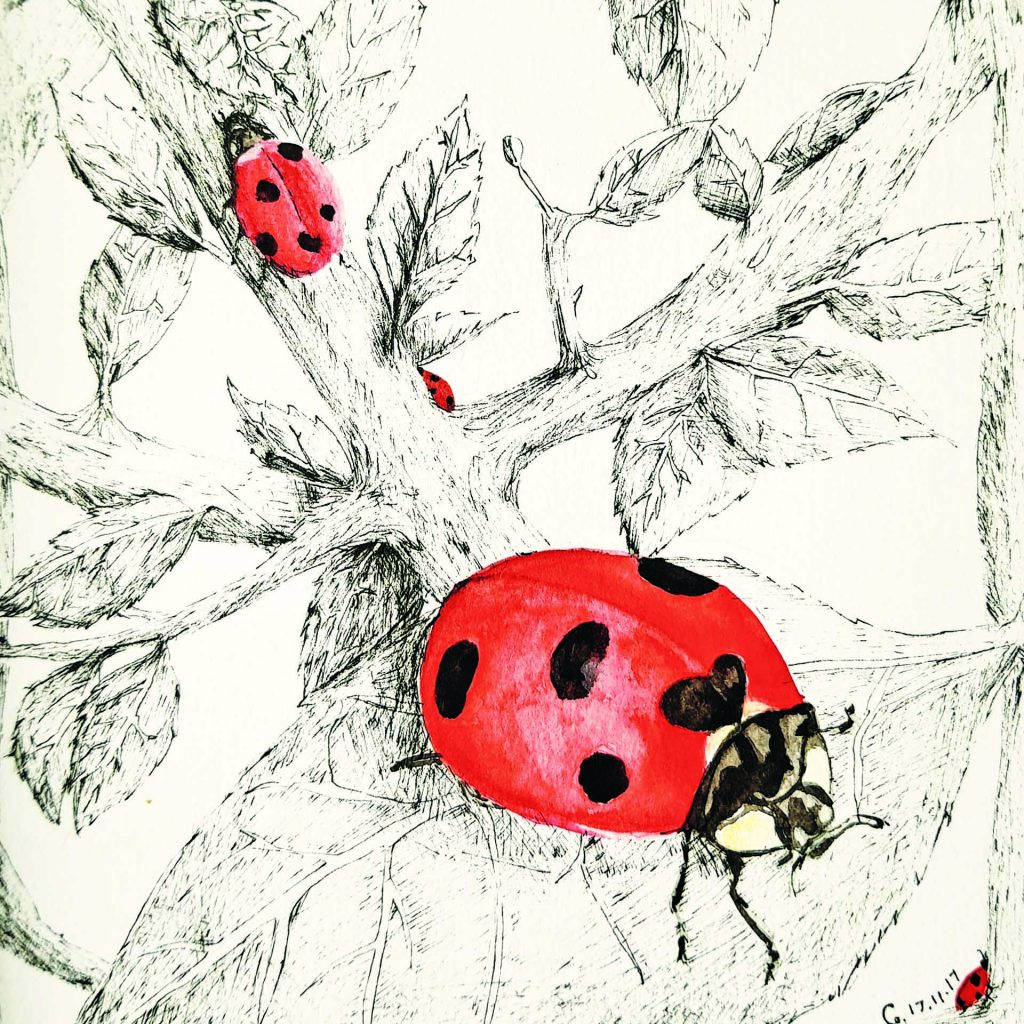 'Lady Bug Forest' by Cecilia Cabalquinto