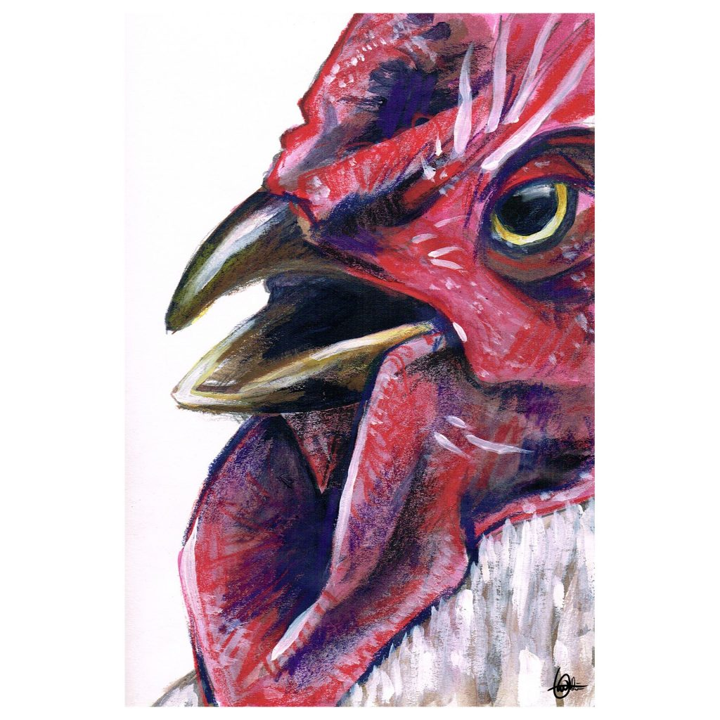'Rooster' by Liam Waldie