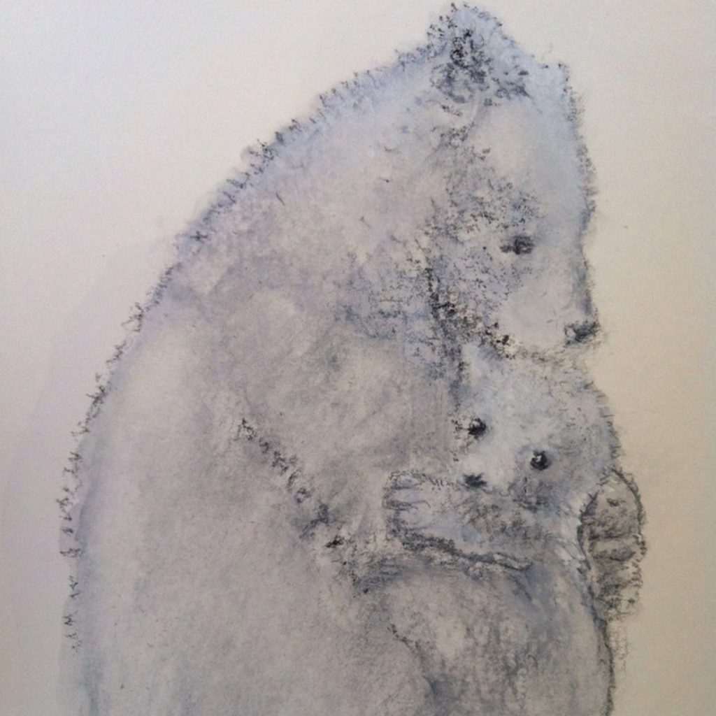 Bears by Lisa Stewart