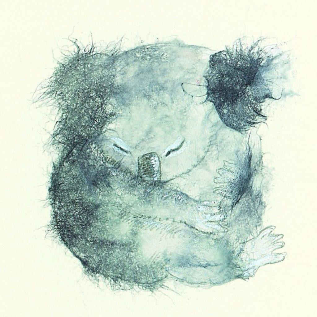 Koala by Lisa Stewart