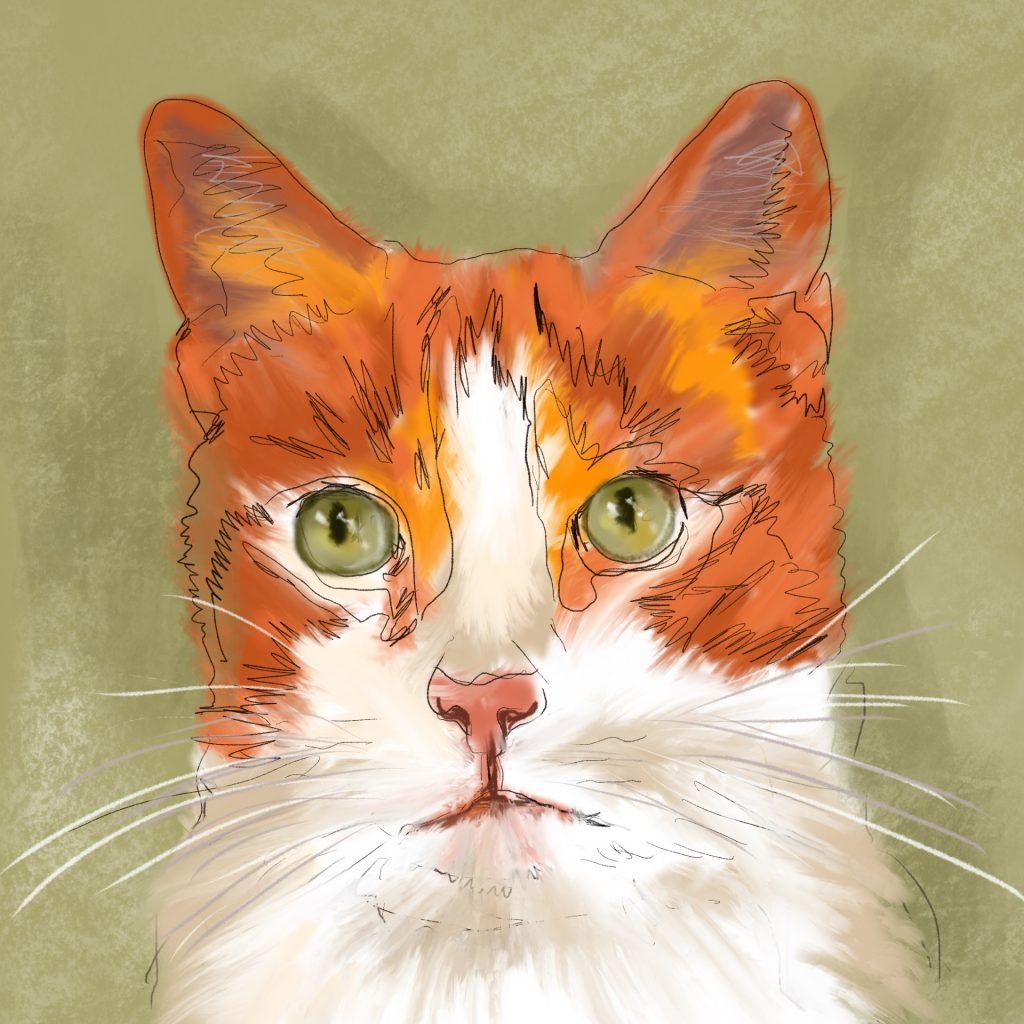 'Orange Cat Oscar' by Helen Alker