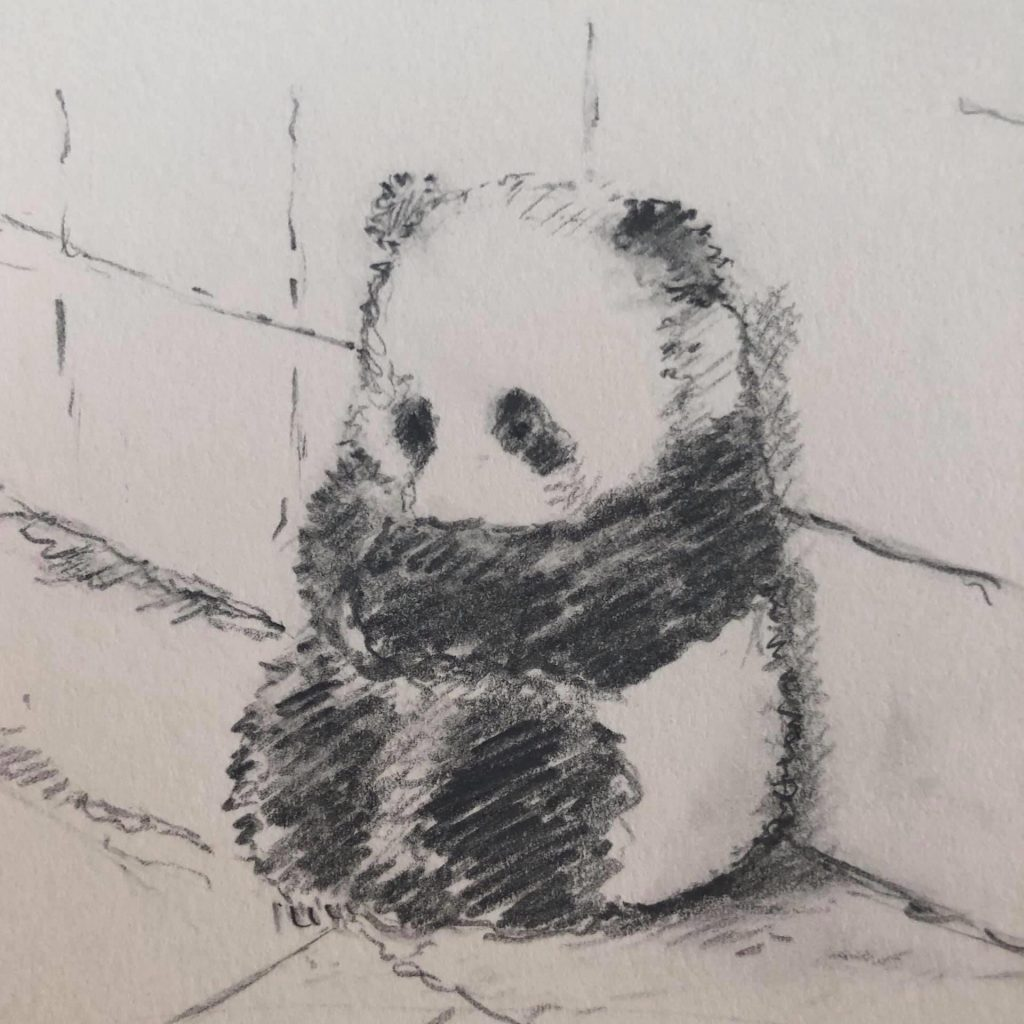 'Panda' by Lisa Stewart