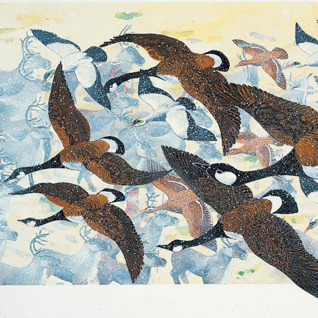 Migration Geese by Philip Blythe