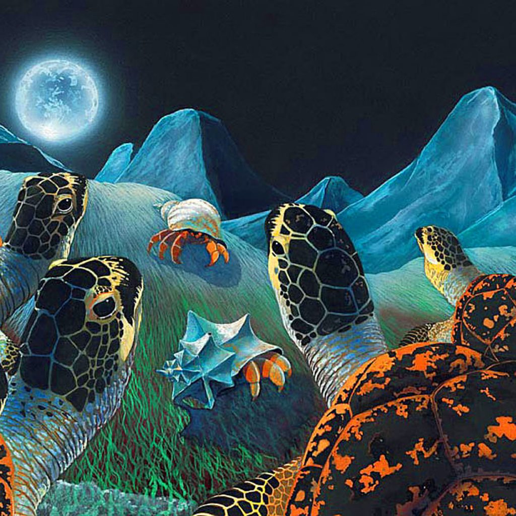 'Turtle Full Moon Arrival' by Philip Blythe
