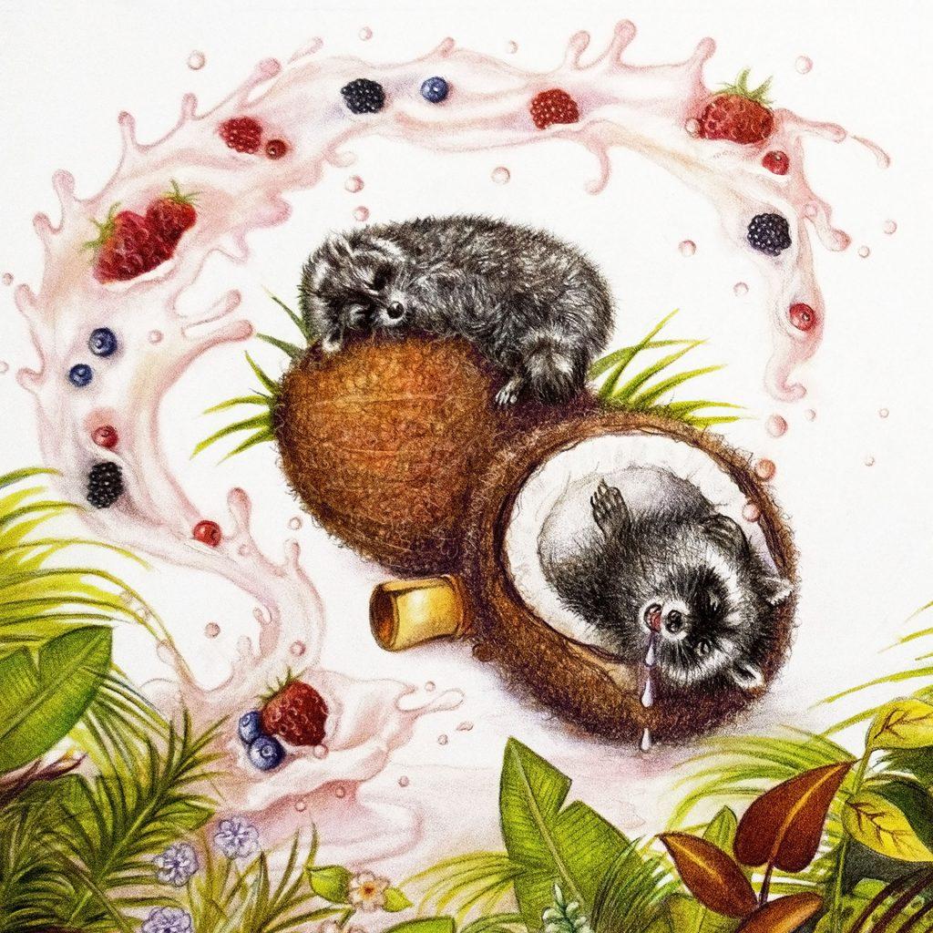 'Raccoon Dreams' by Lesley McGee