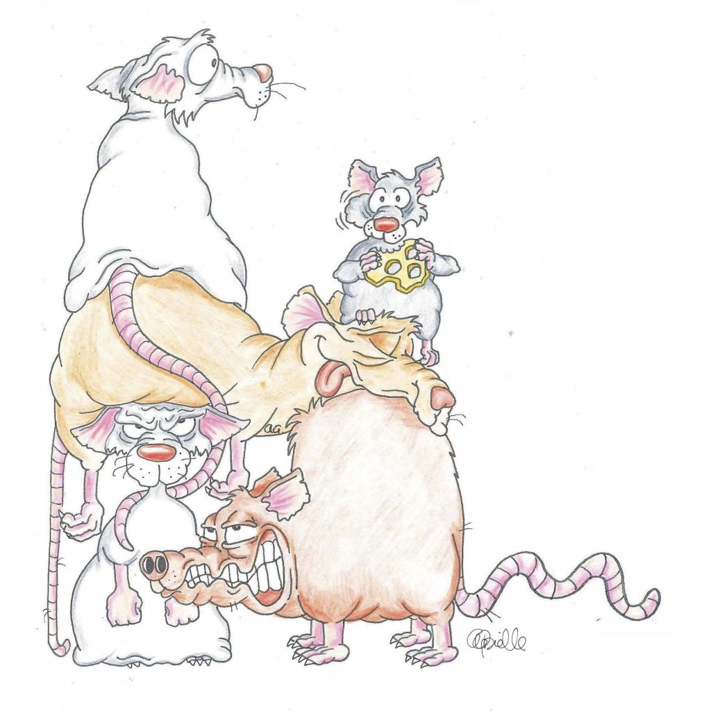 'Rats' by Anna Gabrielle