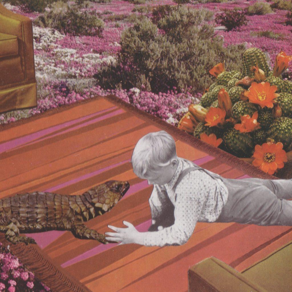 'Lizard Boy' by Stephanie Hicks