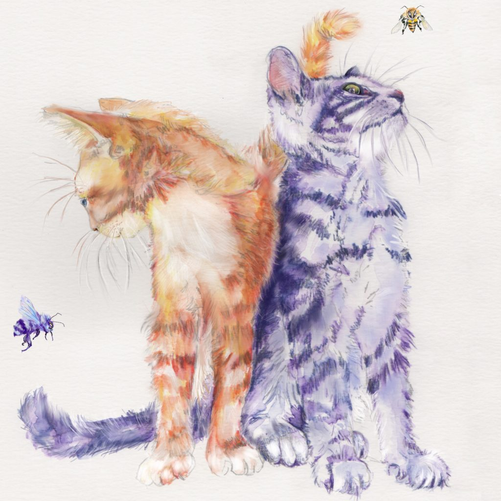 'Two Cats Two Bees' by Helen Alker