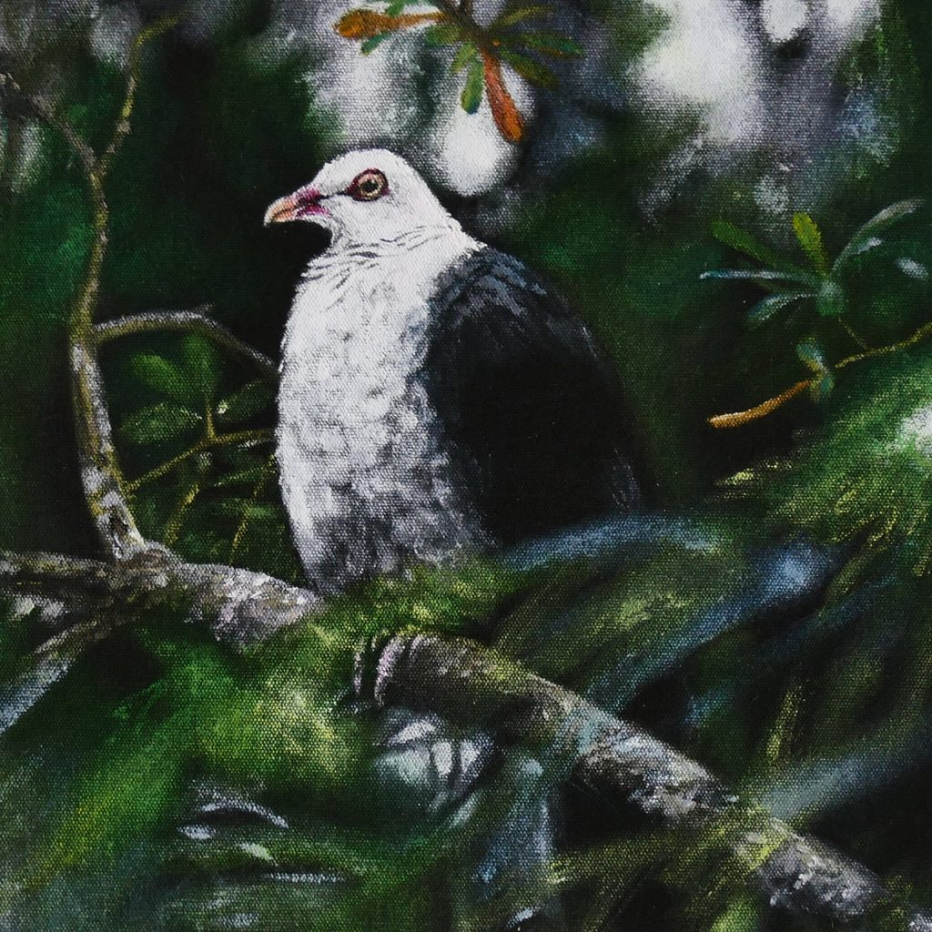 'Pigeon' by Julie Cunningham