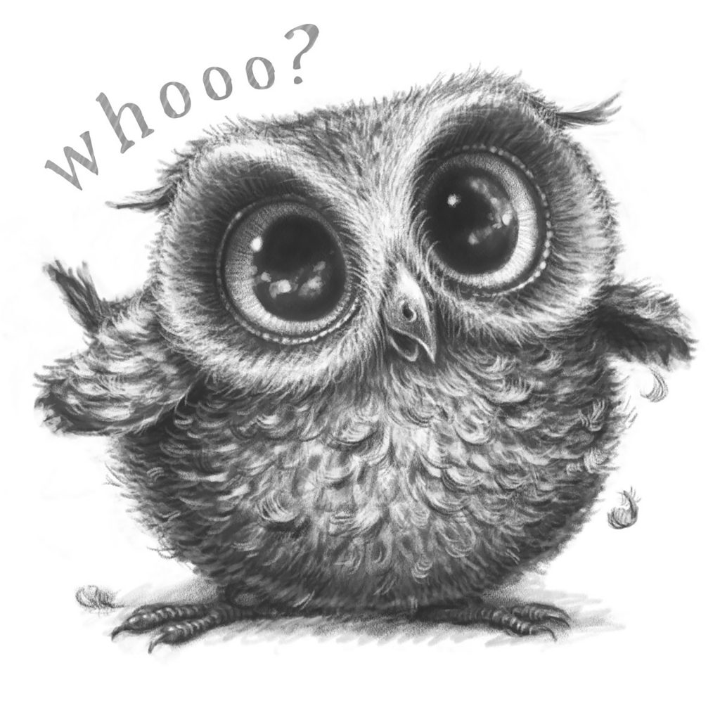 'Whooo?' by Marjorie Crosby-Fairall