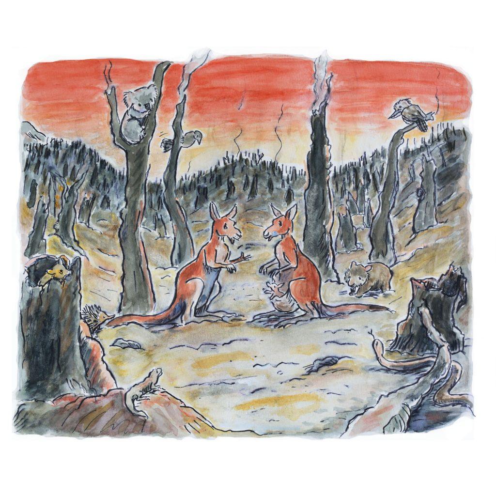 'bushfire' by Andrea Verstegen
