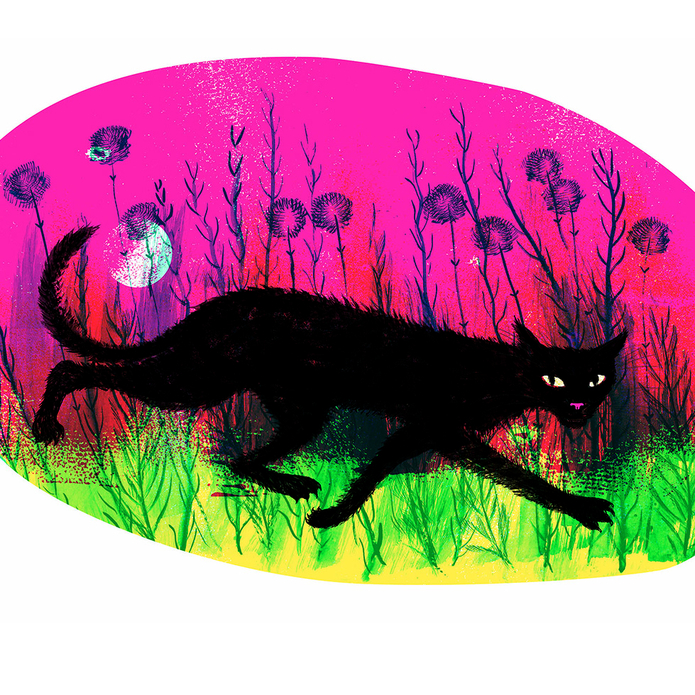 'Once Were Wild' by Judy Watson