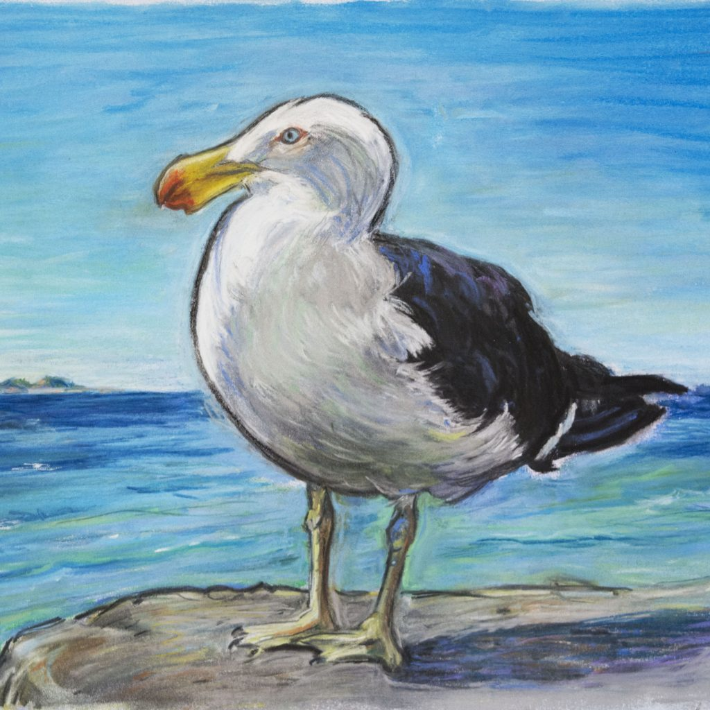 'whisky the pacific gull' by Andrea Verstegen